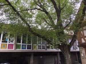 Galerie Spitalmühle und Nussbaum, Foto: KUNST KLOSTER