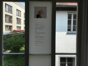 Fensterseite: Foliengalerie, Bio, Foto: KUNST KLOSTER