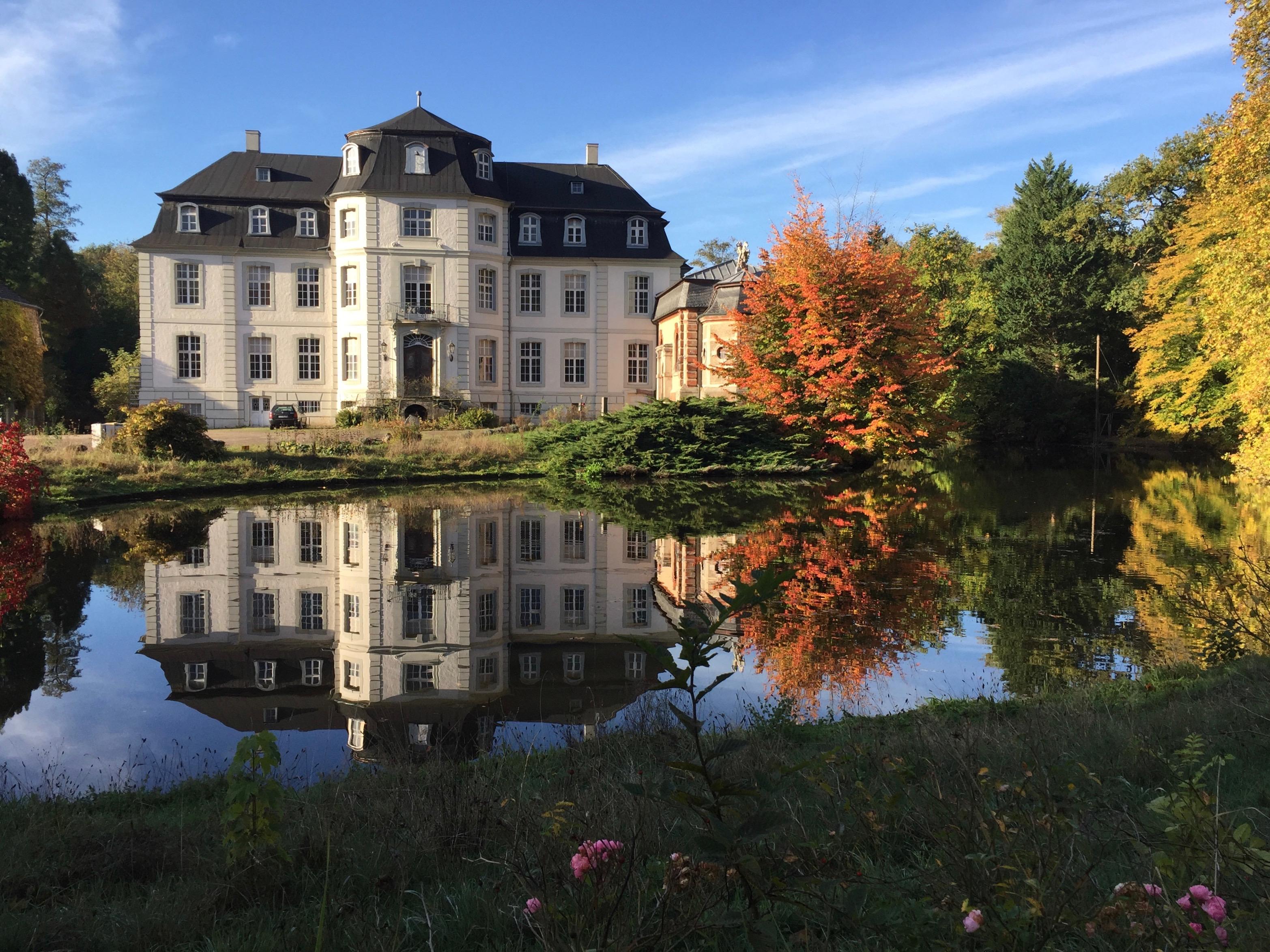 Baum-Zeichen in Seminar Schloss Türnich