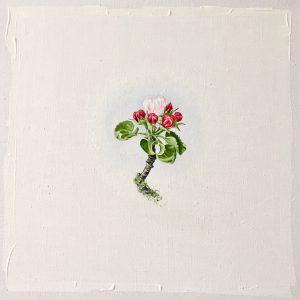 Natur Ikone, Apfel-Blüten-Zweig, Öl auf Leinwand, 30 x 30 cm, 2019