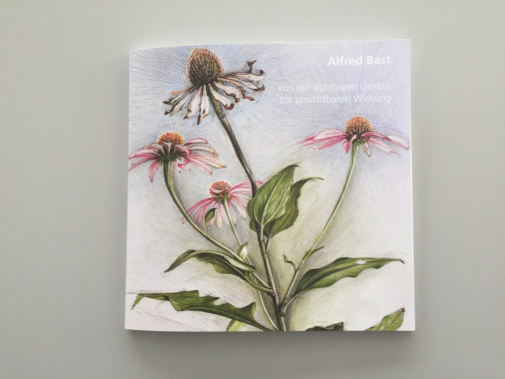 Echinacea-Projekt  Kunstmappe