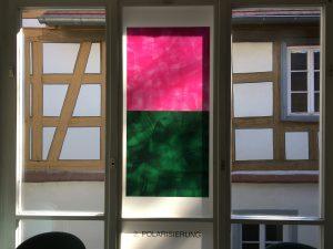 Fensterseite: Foliengalerie, Echinacea-Prozess. 2. Polarisierung,Foto: KUNST KLOSTER