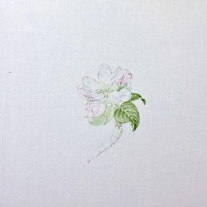 """""""work in progress"""" 2 Natur Ikone Apfelblüten Zweig, Öl auf Leinwand, 30 x 30 cm, 2019"""
