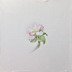 """""""work in progress"""" 4 Natur Ikone Apfelblüten Zweig, Öl auf Leinwand, 30 x 30 cm, 2019"""