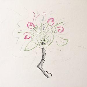 Zeichnung, Apfelblüten-Zweig, Farbstift auf Papier, 30 x 30 cm, 2019